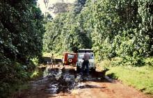 Zum Mount Kenya mit Umkehr, 10.12.1988