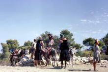 Per Esel zum Aphea Tempel auf Ägina