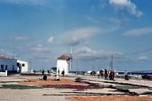 Der Hafen von Paros, Juni 1964
