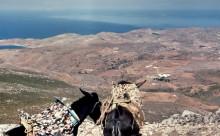 Auf dem Gipfel vom Prophet Elias, Paros, Juni 1964