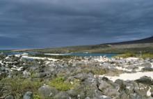 Lobo Bucht auf San Cristobal, 11.10.