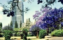 Im Harare Stadtpark