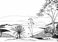 Im Vumba Botanischen Garten, 1988
