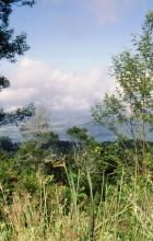 Ausblick vom Leopards Rock
