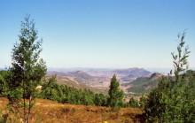 In den Eastern Highlands
