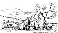 In den Otavi Bergen auf einer namibischen Farm, 23.6.1992