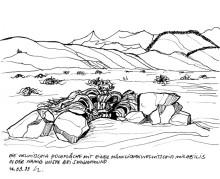 Auf der Welwitschia Hochfläche bei Swakopmund, 14.9.1999