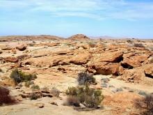 Felsenwanderung auf Wüstenquell, 17.11.03