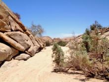 Allradfahrt im Rivier auf Wüstenquell, 17.11.03