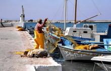 Im Fischerhafen von Pythagorion, 30.5.