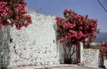 Griechische Sommerfarben auf Samos, 31.5.