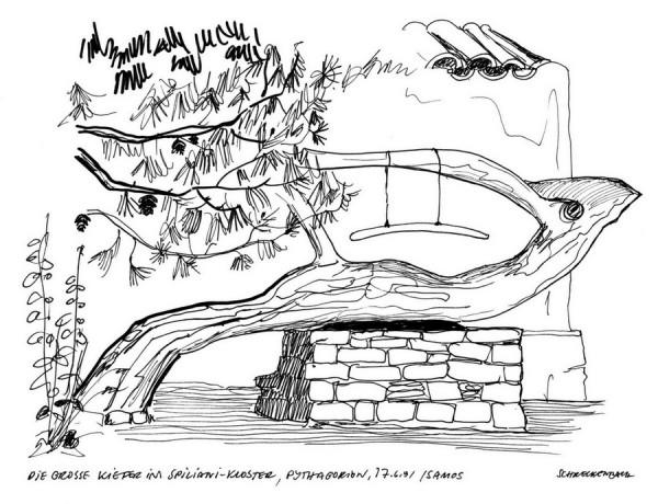 Stützmauer für die Kiefer am Spiliani Kloster in Pythagorion auf Samos, 17.6.1991