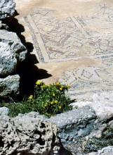 Mosaikboden in der Agia Sophia, Arkassa, 5.6.