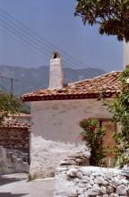 In Avlakia auf Samos, 18.6.