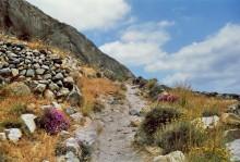 Ein Bergpfad, 17.6.1996