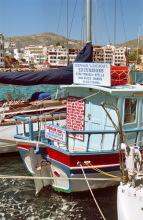 Touren im Angebot am Hafen von Pigadia, 21.6.1998