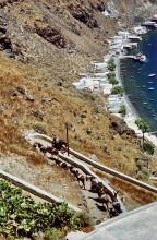 Abwärts von Manolas per Esel zum Hafen von Thirasia, 23.6.