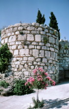 Mauern im Kastell von Pythagorion, 18.6.