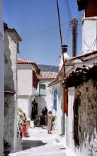 In Avlakia auf Samos, 19.6.