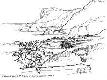 Blick zurück auf die Küste bei Mesochori, 20.6.1998