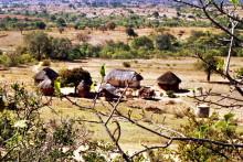 Fahrt nach Masvingo, 1986