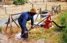 Bewässerung mit Brauchwasser in Melford, 1990