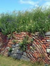 Trümmerziegel und Steine aus den Ruinen