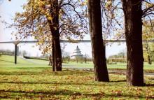 Herbstblick zum Jahrtausendturm