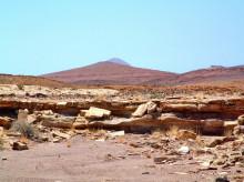 Die Versteinerungen bei Gai-As
