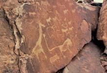 Felsgravuren in Twyfelfontein, 2001