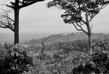 Ausblick vom Gästehaus, 1980