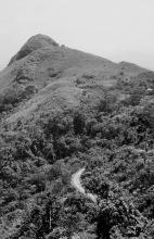 Der Mount Gemi, 1981