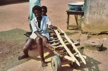 Amedzofe Transport, 1981