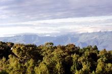Landschaft vor dem Rift Tal bei Kabarnet, 1989