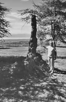 Temitenhügel am Ufer vom Baringo See, 3.5.1987