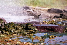 Naturskulpturen am Ufer vom Bogorio See, 1989