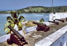Ausblick mit Kanonen, Fort Metal Cross, 1974