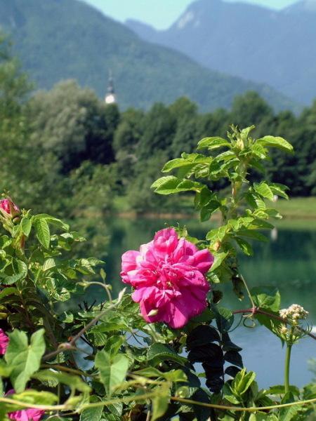 Anreise in die Dolomiten mit Pause unterwegs, 20.06.