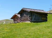 Alte und neue Blockhütten auf der Troier Alm, 27.06.