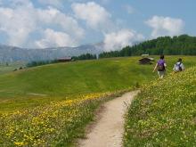 Wandern durch Blumen, 29.06.
