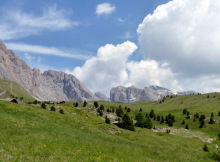 Troier Alm Landschaft, 2.7.